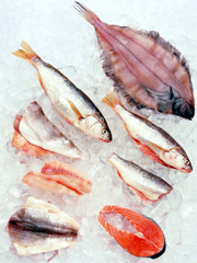 12 foods to fight cancer for Fish oil cancer