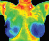 Thermography shot 2