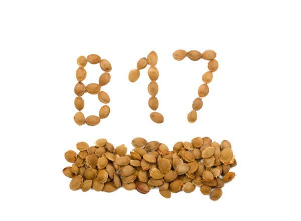 vitamine b17 zit in