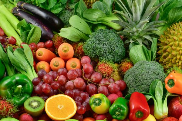 Diet as an integral part of your Complementary and Integrative cancer treatment programme
