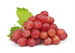 Red grape polyphenols inhibit progression of breast cancer