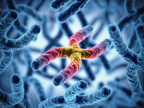 Epigenetics and reversing cancer