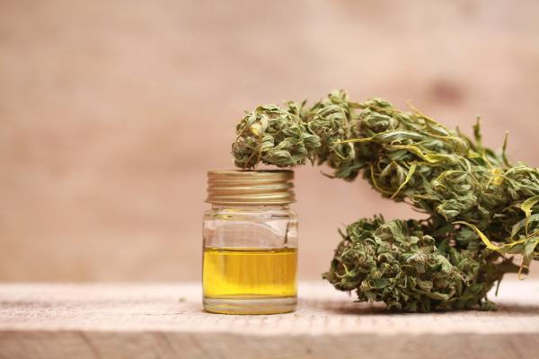 Hemp oil slows ovarian cancer cell spread