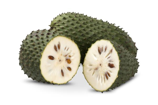 Ellagic acid and Soursop can prevent HPV infection causing cancer