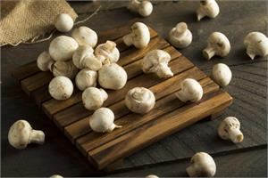 Button mushrooms help in breast and prostate cancer