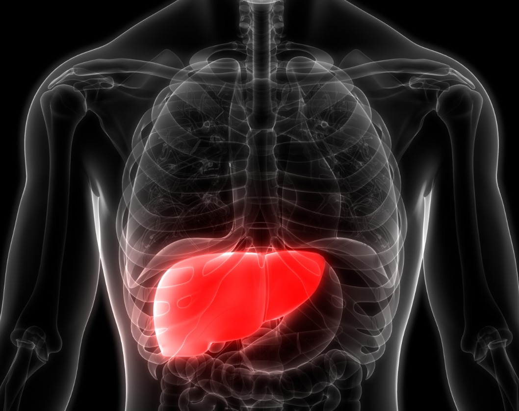 * Liver Cancer - Latest News, Latest Research | CANCERactive