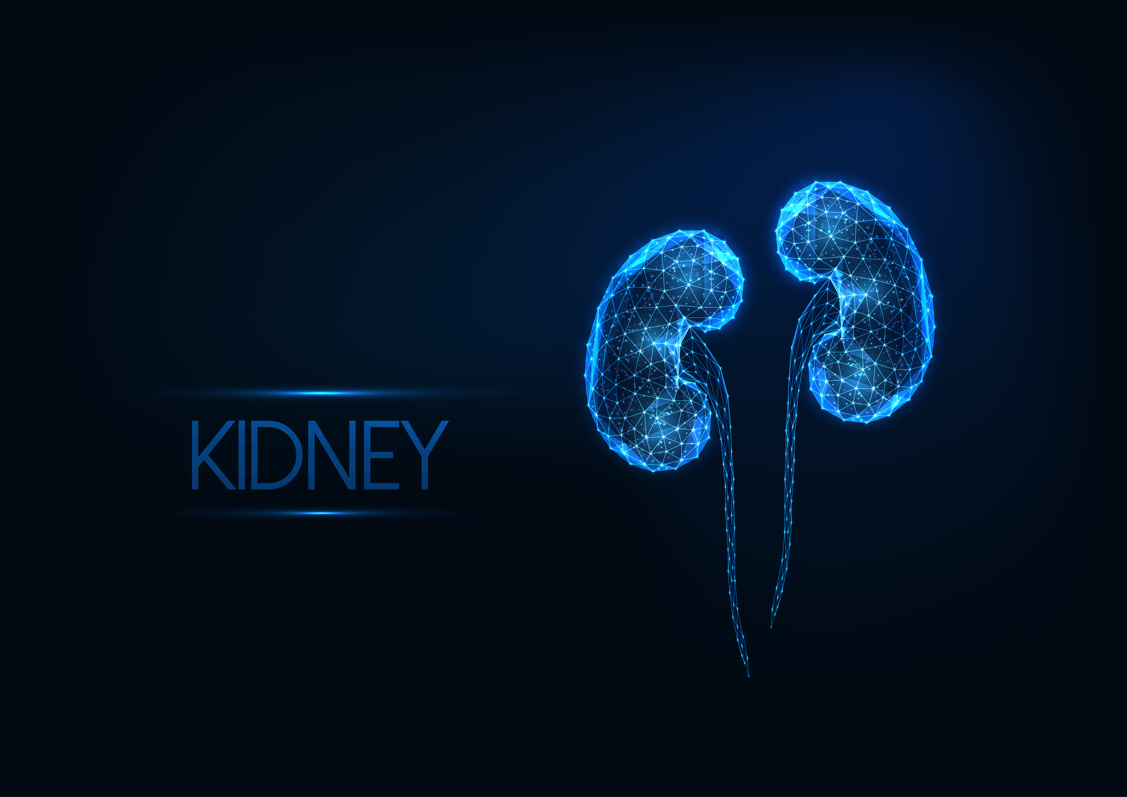 Kidney Tumours - The Facts
