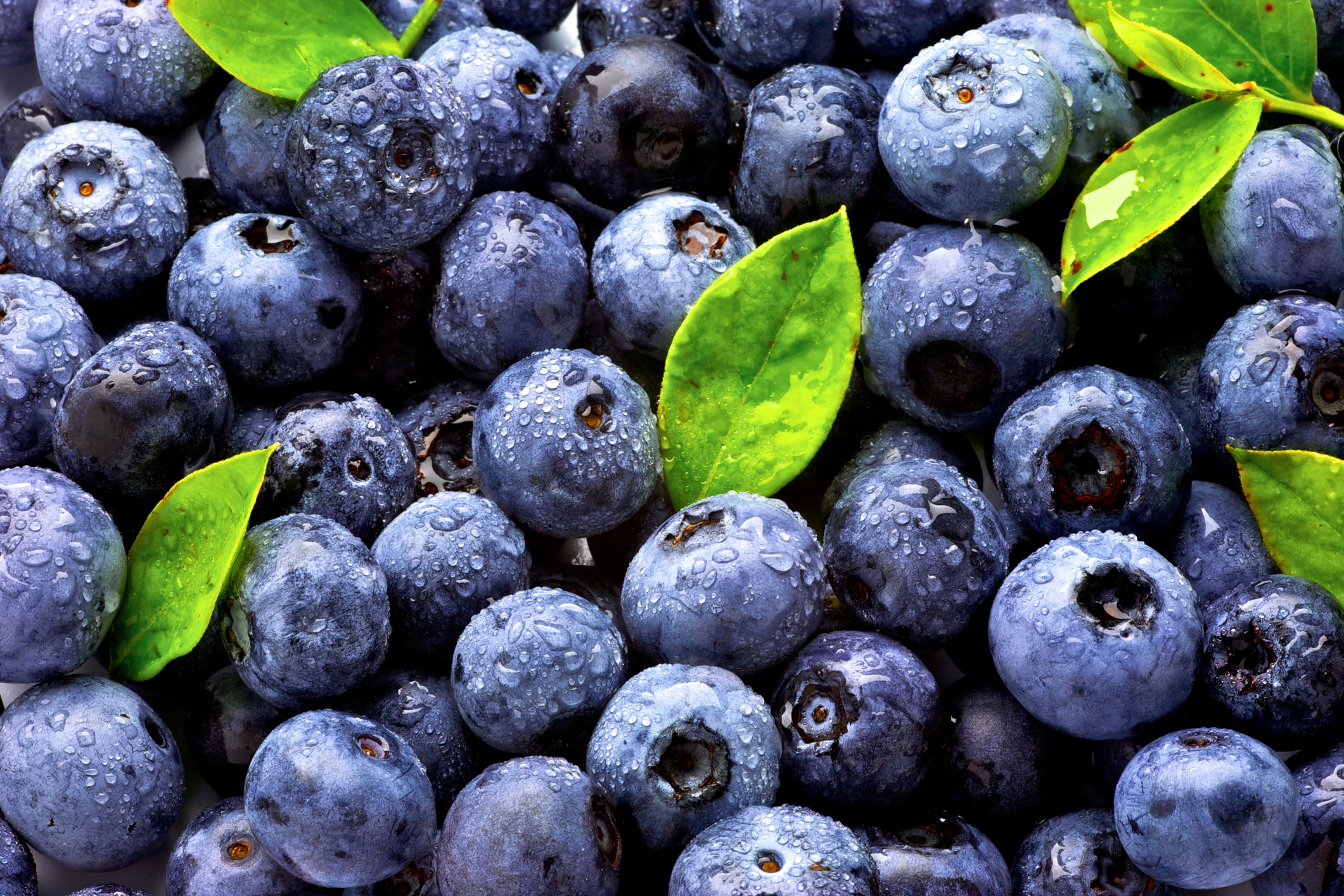 Blueberries can fight TNBC